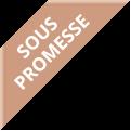 tag promesse